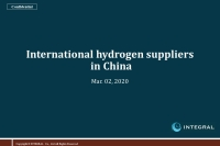 International Hydrogen Suppliers in China(EN) 20200302