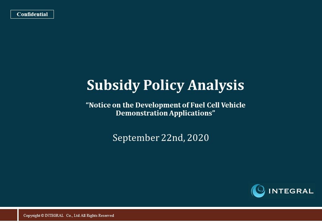 20200923 Subsidy Policy Analysis 2